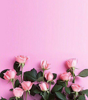 wallpaper, green and pink