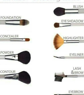 Brushes, beauty and beginner