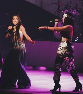 dwt, purple and bia