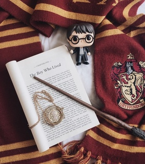 gryffindor, wand and reading