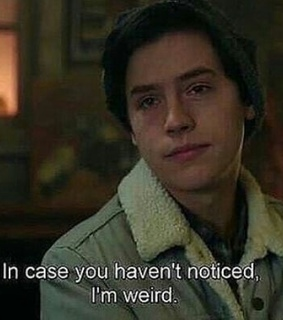 fandom, quotes and riverdale