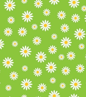 flowers, wallpapers and daisies