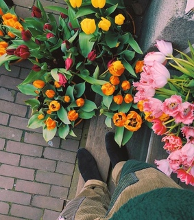 aesthetic, alternative and flowers