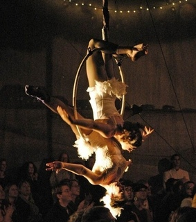 aerialist, circus and Swan