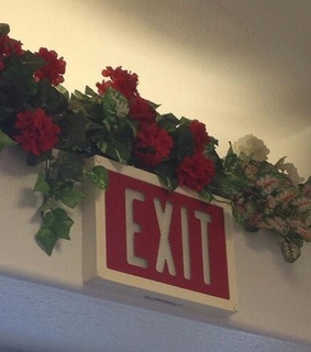 aesthetics, beautiful and exit