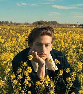 cole sprouse and flowers