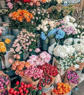 bunches, colourful and flowers