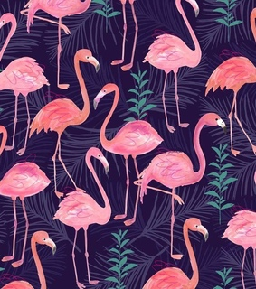 Animales, aves and flamencos