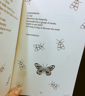 butterfly, inspire and love