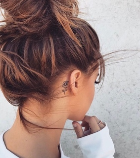 back, brunette and bun