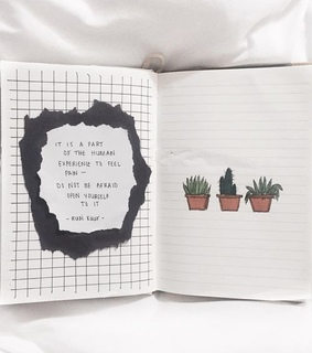 cactus, journaling and poetry