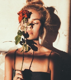 rose, perfect and wallpaper