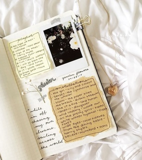 vogue, chic and journal