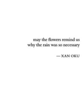 flowers, quote and rain