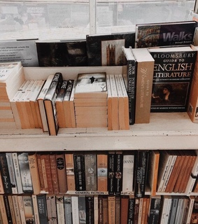 aesthetics, books and library