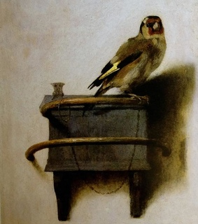 goldfinch, spring and love