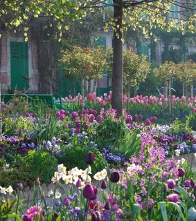 sweet, giverny and nature