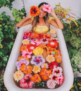 flowers, colorful and bath