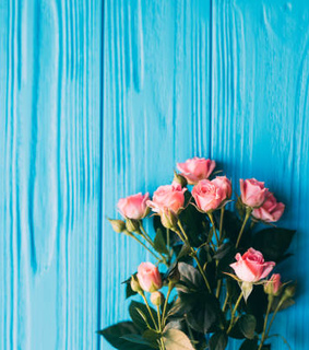teal, roses and beautiful