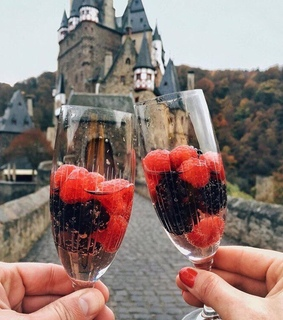 champagne, happy life and castle