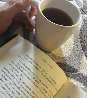 reading, book and grey