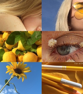 entp, entp aesthetic and lemons