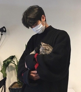ulzzang, boy and cat