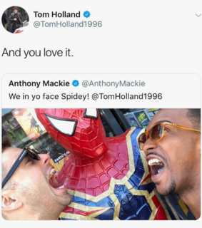 falcon, twitter and tom holland
