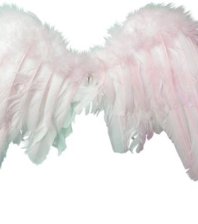 Polyvore, overlay and wings