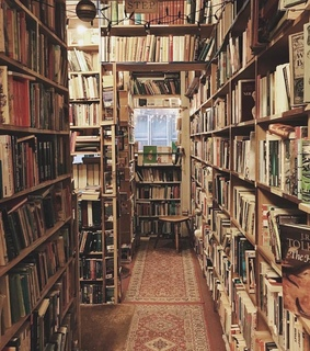 reading, catcher in the rye and library