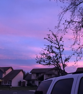 purple, sky and cali