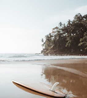 board, surfing and surf