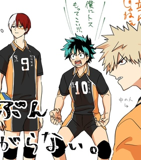 karasuno, izuku midoryia and haikyuu