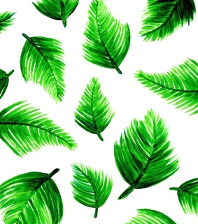 vector, green leaves and palm leaves