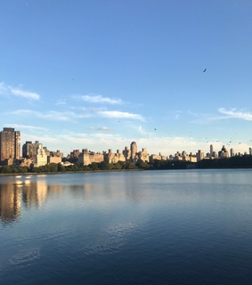 wallpaper, sunset and Central Park