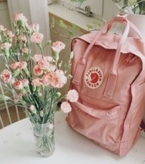 aesthetic, flowers and pastel pink