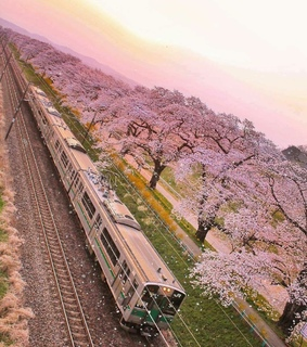 pinky, travel and beautiful