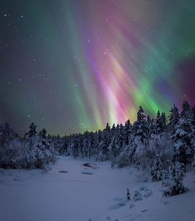 cold, nature and northern light