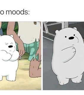accurate and we bare bears