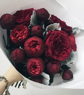 gift, dark red and beauty