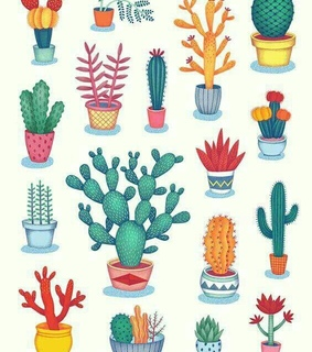 drawing, cactus and sketches