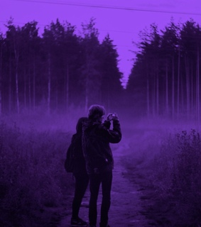 pale, forest and violet