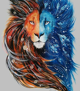 orange, blue and Leo