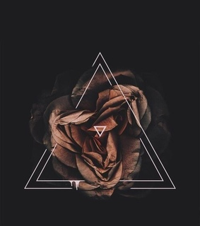 edits, rose and triangle