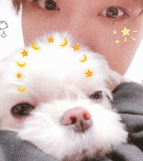 coco, cute and kpop