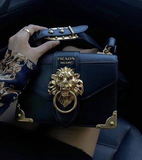 luxury, expensive and purse
