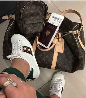 flight, gucci and Louis Vuitton