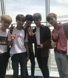 low quality, nct lq and nct