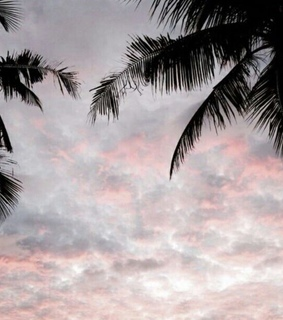 aesthetic, soft and sky