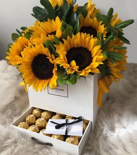 chocolate, chocolates and sunflower